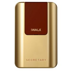 Зовнішній акумулятор iWALK Secretary Universal Backup Battery 10000 mah Gold (SBS100G)