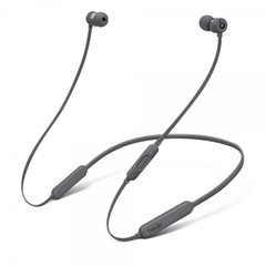 Наушники Beats by Dr. Dre BeatsX Earphones (Gray)