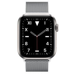 Apple Watch Series 5 Edition 44mm Titanium Case with Milanese Loop (MWR62+MTU62)